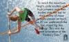 Physics of the olympics - pole vault